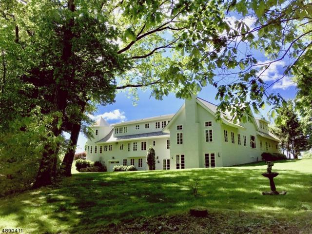 6 Great Oaks Rd, Harding Twp., NJ 07976 (MLS #3566006) :: Coldwell Banker Residential Brokerage