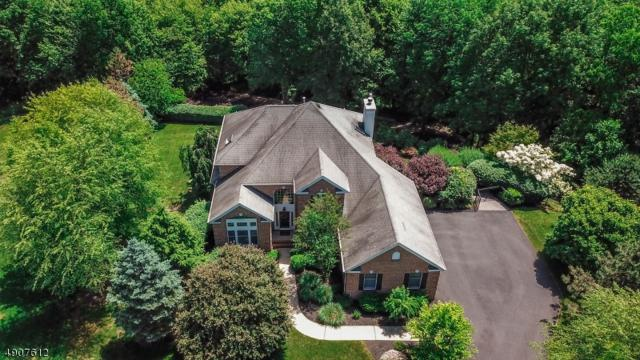 8 Small Brook Cir, Denville Twp., NJ 07869 (MLS #3566498) :: Weichert Realtors