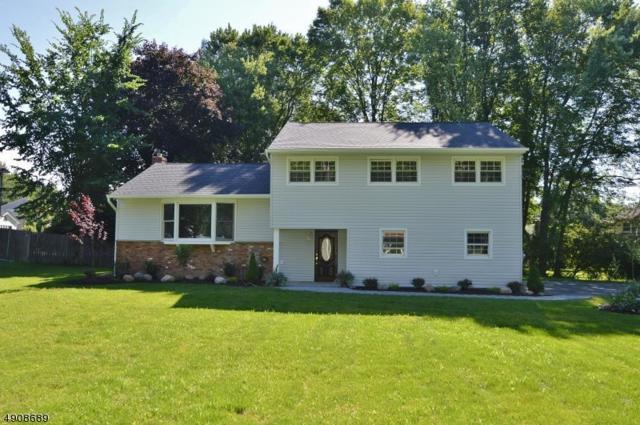 4 W Wilson Ave, East Hanover Twp., NJ 07936 (MLS #3567298) :: SR Real Estate Group