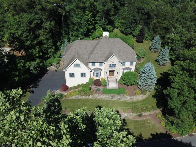 32 Mallard Dr, Allamuchy Twp., NJ 07840 (MLS #3567462) :: The Dekanski Home Selling Team
