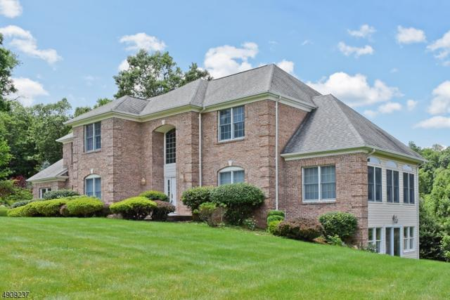 37 Skyview Dr, Sparta Twp., NJ 07871 (MLS #3567863) :: Weichert Realtors