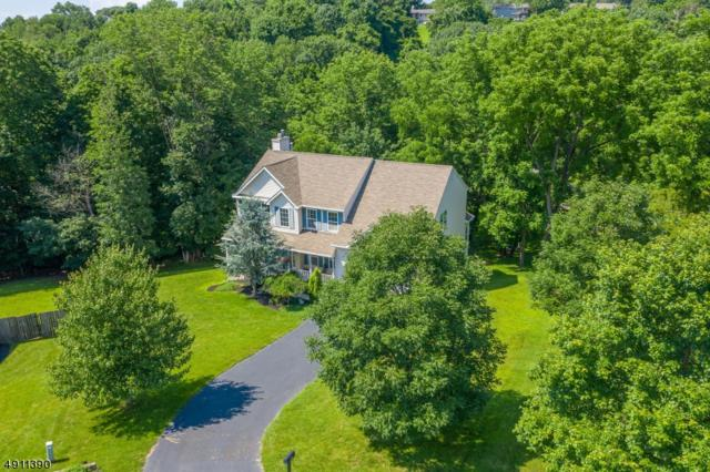 16 Crossfield Ct, Milford Boro, NJ 08848 (MLS #3569811) :: SR Real Estate Group