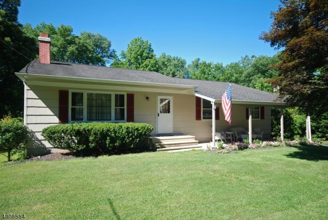 32 S Main St, Stockton Boro, NJ 08559 (#3570060) :: Jason Freeby Group at Keller Williams Real Estate