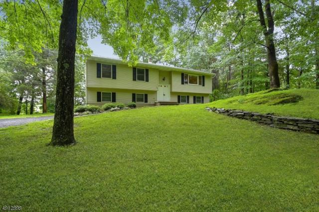 23 Nightingale Rd, Knowlton Twp., NJ 07825 (MLS #3571506) :: SR Real Estate Group