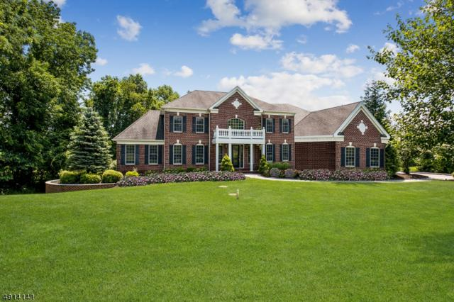 14 Ridgeline Dr, Washington Twp., NJ 07853 (#3572985) :: Daunno Realty Services, LLC