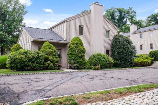 3 Somerset Hills Ct 3B, Bernardsville Boro, NJ 07924 (MLS #3573366) :: REMAX Platinum