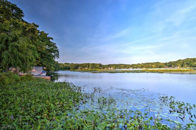 4 South Lake Trail, Byram Twp., NJ 07821 (MLS #3573991) :: The Sue Adler Team