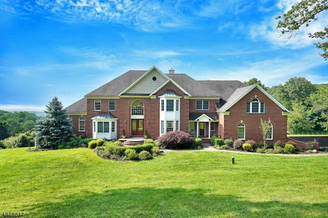 3 Alexandria Overlook, Alexandria Twp., NJ 08848 (MLS #3576920) :: SR Real Estate Group