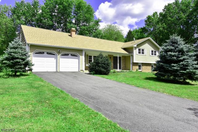 2 Montgomery Ave, Montville Twp., NJ 07045 (MLS #3578852) :: SR Real Estate Group