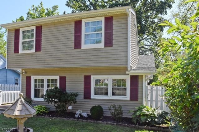 38 Calumet Ave, Parsippany-Troy Hills Twp., NJ 07034 (MLS #3579643) :: The Debbie Woerner Team