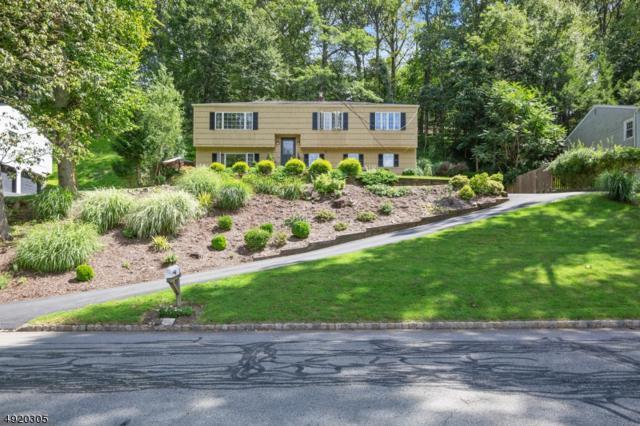 54 Burnham Pky, Morris Twp., NJ 07960 (MLS #3579842) :: SR Real Estate Group