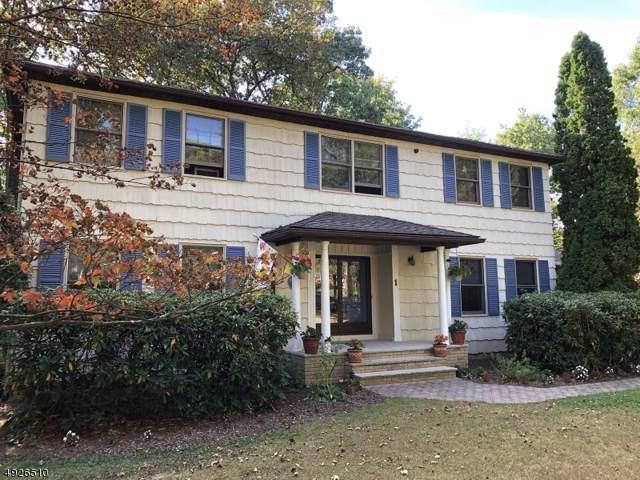 1 Eric Trl, Vernon Twp., NJ 07461 (MLS #3583509) :: The Dekanski Home Selling Team