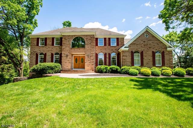 33 Lynchburg Ct, Montgomery Twp., NJ 08502 (#3585068) :: Proper Estates