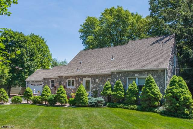 4 Terrace Road, Boonton Twp., NJ 07005 (MLS #3585300) :: Mary K. Sheeran Team