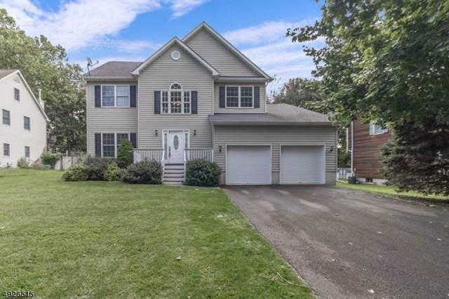 908 Liberty St, Belvidere Twp., NJ 07823 (#3587329) :: Jason Freeby Group at Keller Williams Real Estate