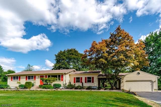 374 Mechlin Corner Rd, Alexandria Twp., NJ 08867 (MLS #3587690) :: SR Real Estate Group