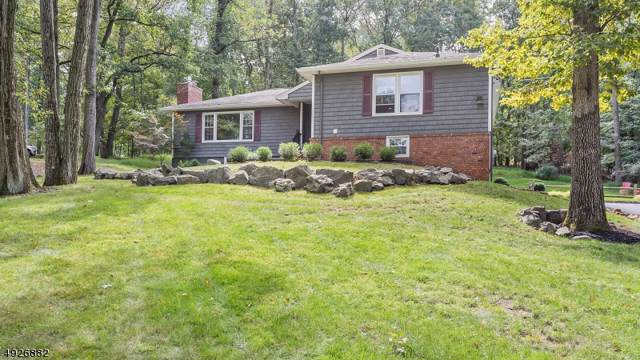6 Redwood Rd, Bridgewater Twp., NJ 08836 (MLS #3587938) :: SR Real Estate Group