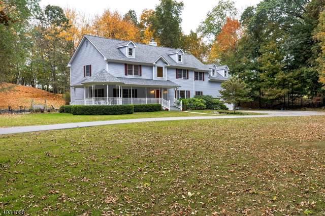 56 Plotts Rd, Hampton Twp., NJ 07860 (MLS #3591537) :: The Sikora Group