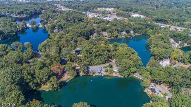 47 Scenic Drive, Parsippany-Troy Hills Twp., NJ 07834 (MLS #3594234) :: Mary K. Sheeran Team