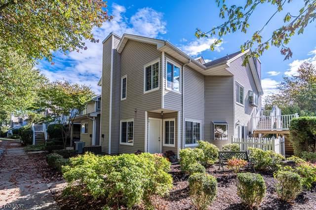 34 Morgan Ct, Bedminster Twp., NJ 07921 (#3594257) :: Proper Estates