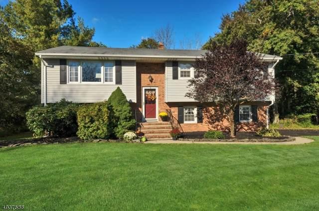 515 Somerville Rd, Bridgewater Twp., NJ 08807 (MLS #3594599) :: SR Real Estate Group
