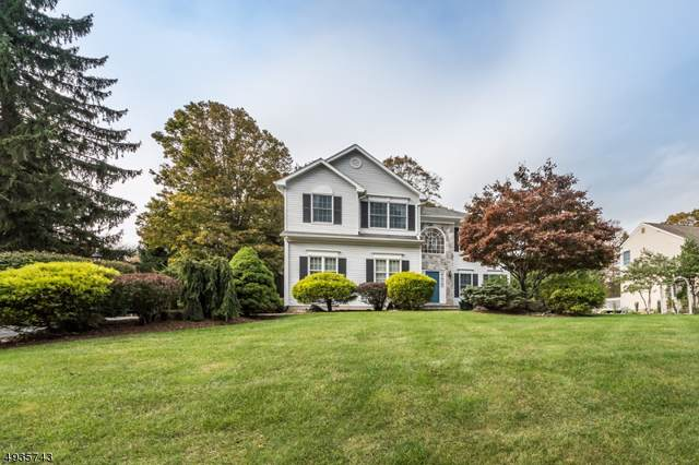 39 Marjaleen Dr, Randolph Twp., NJ 07869 (MLS #3594793) :: The Sue Adler Team