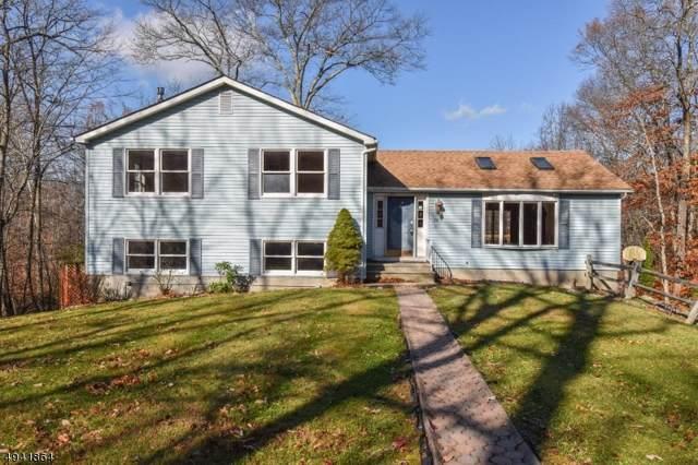 28 Oak Ridge Rd, Montague Twp., NJ 07827 (MLS #3598463) :: William Raveis Baer & McIntosh