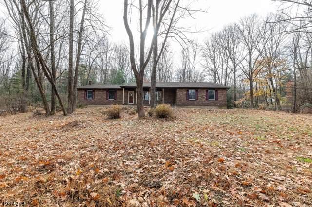61 Red Mill Rd, Lebanon Twp., NJ 08826 (MLS #3600173) :: SR Real Estate Group