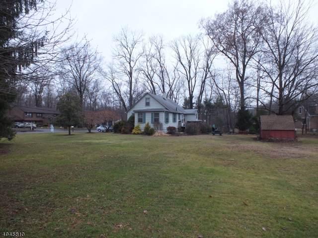 162 Cedar Knolls Rd, Hanover Twp., NJ 07981 (MLS #3601590) :: William Raveis Baer & McIntosh