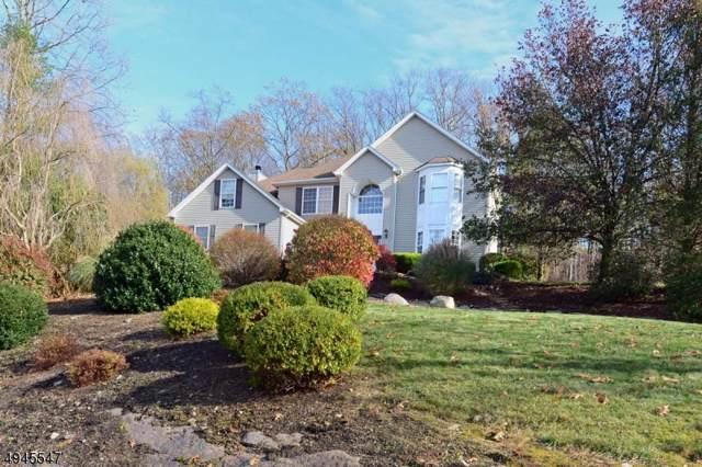 6 Skyler Ct, Jefferson Twp., NJ 07438 (MLS #3602773) :: The Dekanski Home Selling Team