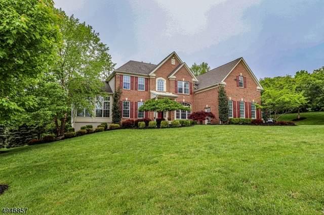 2 Wingover Farm Ct, Raritan Twp., NJ 08822 (MLS #3602795) :: Mary K. Sheeran Team