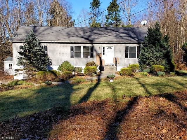 10 Rubin Hill Rd, Montague Twp., NJ 07827 (MLS #3605301) :: Coldwell Banker Residential Brokerage