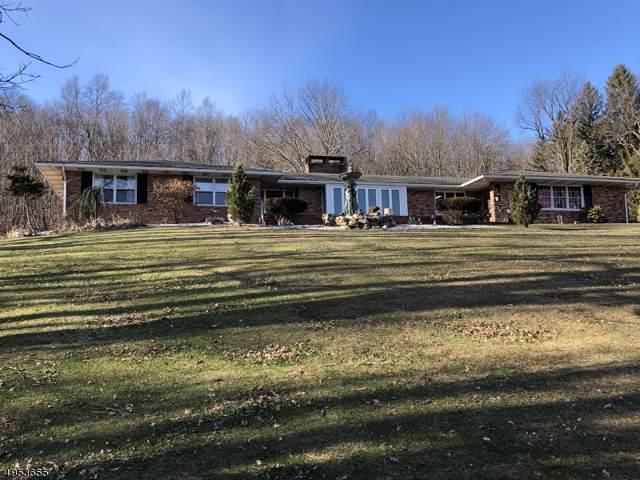 25 Ruth Dr, Wantage Twp., NJ 07461 (MLS #3608392) :: Team Francesco/Christie's International Real Estate
