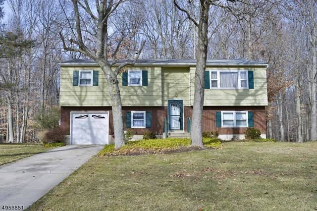 396 Green Ln, Ewing Twp., NJ 08638 (MLS #3611152) :: The Sue Adler Team
