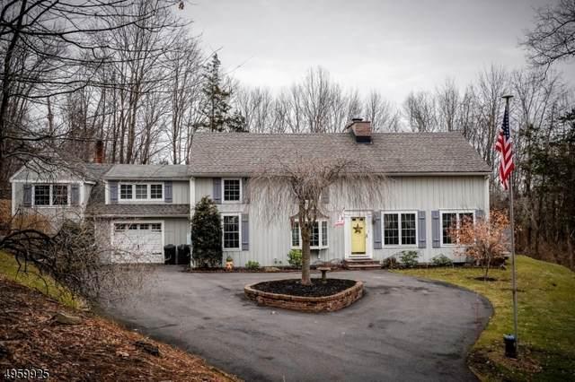 60 Plotts Rd, Hampton Twp., NJ 07860 (MLS #3614119) :: The Dekanski Home Selling Team