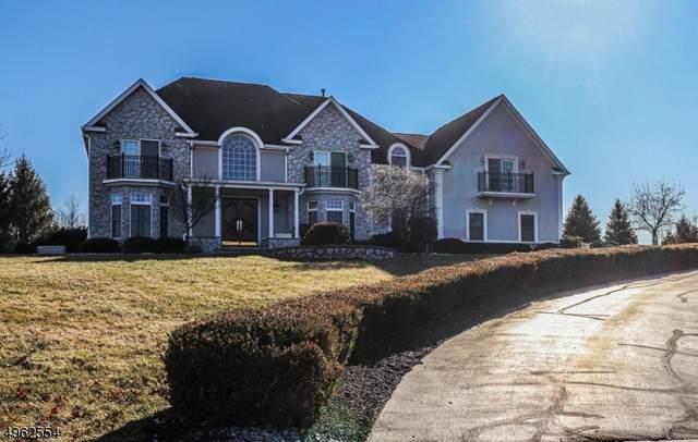 3 Winterberry Ct, Readington Twp., NJ 08889 (MLS #3617404) :: The Dekanski Home Selling Team