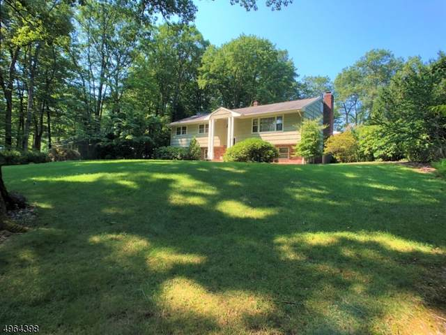 230 Brook Valley Rd, Montville Twp., NJ 07082 (MLS #3618178) :: The Dekanski Home Selling Team
