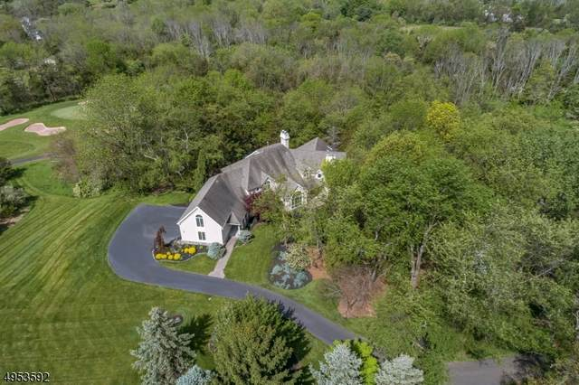 6 High Ridge Ct, Readington Twp., NJ 08889 (MLS #3622155) :: The Karen W. Peters Group at Coldwell Banker Realty