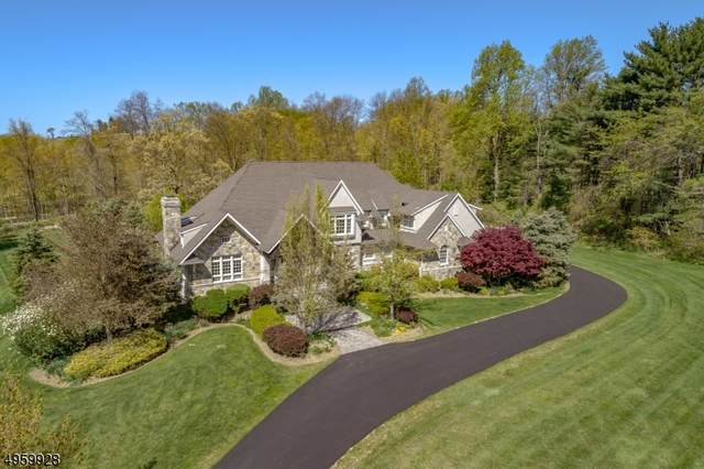7 Halsey Farm Road, Tewksbury Twp., NJ 08833 (MLS #3622403) :: Pina Nazario