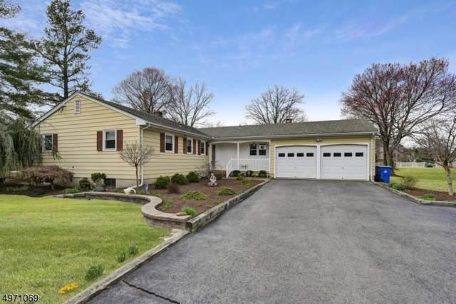 231 Belle Mead-Griggstown, Montgomery Twp., NJ 08502 (MLS #3623508) :: REMAX Platinum