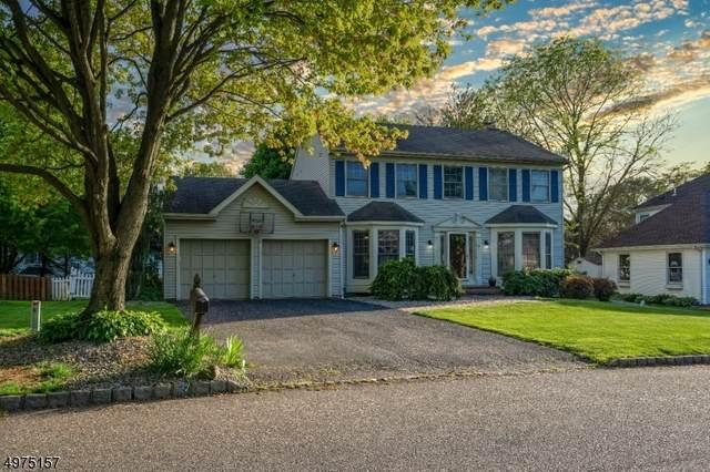 10 Deer Path, Bloomsbury Boro, NJ 08804 (MLS #3627311) :: Coldwell Banker Residential Brokerage