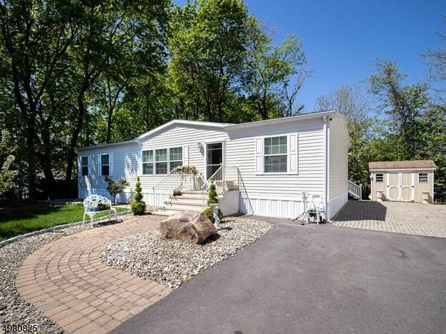 10 White Birch Park, Hampton Boro, NJ 08827 (MLS #3632229) :: SR Real Estate Group