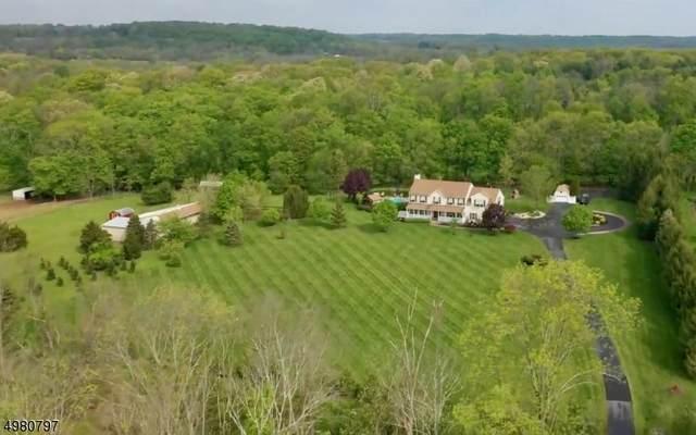 10 Harvest Hill Dr, East Amwell Twp., NJ 08559 (MLS #3633448) :: Weichert Realtors