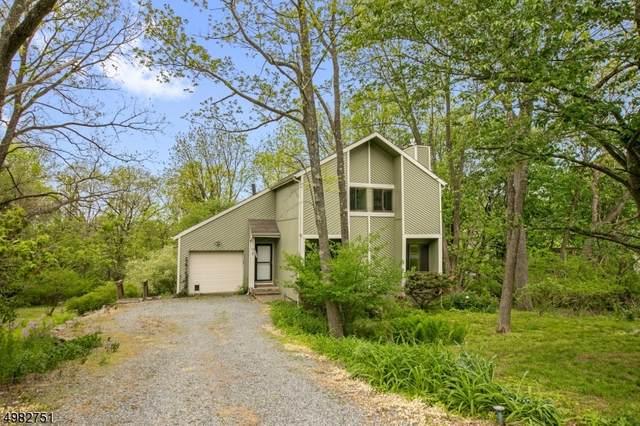 32 Blossom Rd, Hampton Boro, NJ 08827 (MLS #3633897) :: SR Real Estate Group