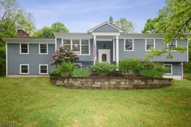 2 Mile Dr, Chester Twp., NJ 07930 (MLS #3634916) :: RE/MAX Select
