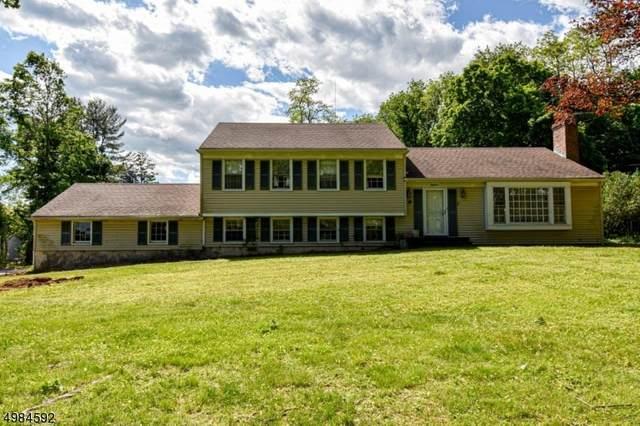 18 Windwood Rd, Bernardsville Boro, NJ 07924 (MLS #3635550) :: Mary K. Sheeran Team