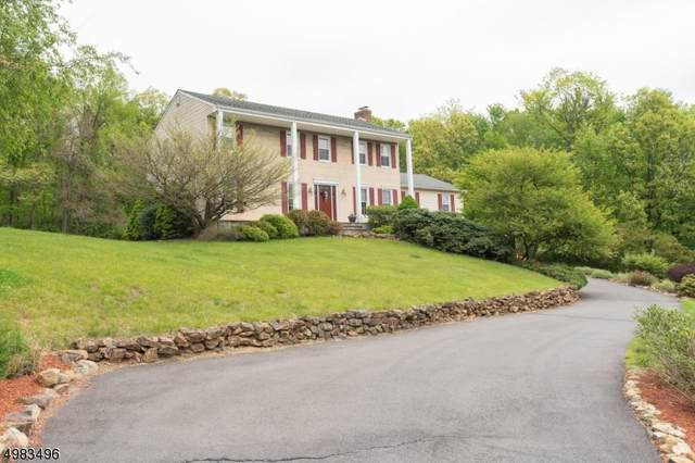 321 N Polktown Rd, Bethlehem Twp., NJ 08826 (MLS #3635565) :: Mary K. Sheeran Team