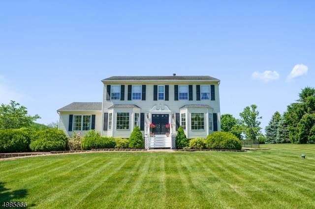 9 Meadowbrook Way, Vernon Twp., NJ 07462 (#3636580) :: Bergen County Properties