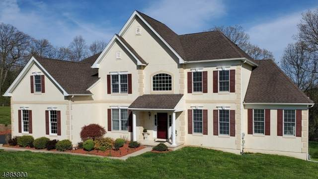 15 Sovereign Dr, Mount Olive Twp., NJ 07836 (MLS #3636678) :: Mary K. Sheeran Team