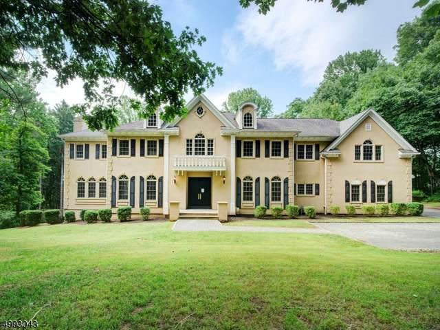 14 Ashland Ter, Chester Twp., NJ 07930 (MLS #3643415) :: Team Francesco/Christie's International Real Estate